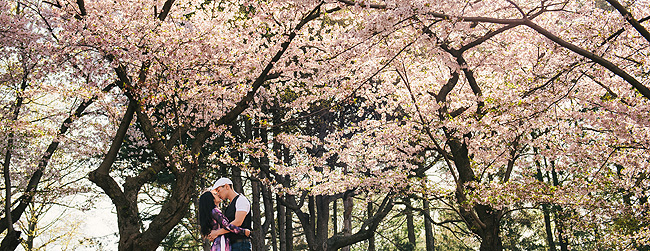 Coming Soon: Lynn & Thanh's High Park Photo Session